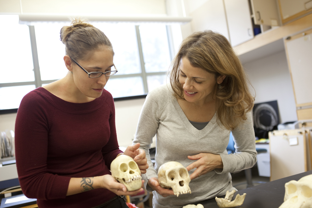 two students in the CASHP Hominid Paleobiology lab in SEH.
